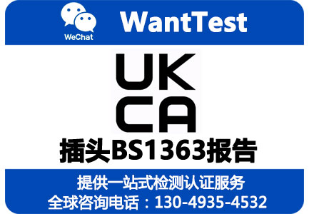 BS1363报告