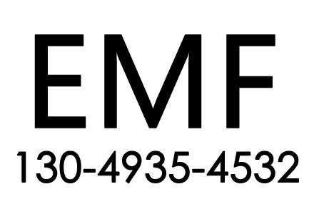 EMF测试