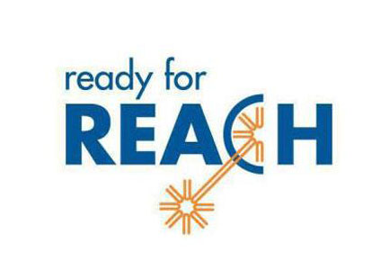 REACH 183项
